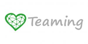 Nuestro perfil en Teaming